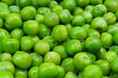 Fondo congelado de la textura de los peases del guisante Modelo verde del fondo del pease Fotos de archivo libres de regalías