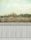 Fondo/contesto della parete della primavera Fotografie Stock
