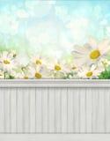 Fondo/contesto della parete della primavera Immagine Stock