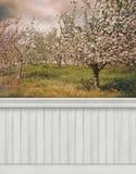 Fondo/contesto della parete della primavera Fotografia Stock Libera da Diritti