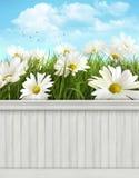 Fondo/contexto de la pared de la primavera Foto de archivo libre de regalías