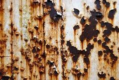 Fondo corroso del metallo bianco Parete arrugginita del metallo dipinta bianco Fondo arrugginito del metallo con le strisce della Immagini Stock