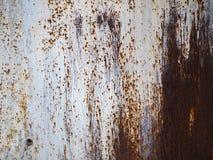 Fondo corroso del metallo bianco Superficie di metallo dipinta bianca arrugginita fotografia stock
