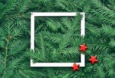 Fondo creativo de la rama del pino con el marco del Libro Blanco Concepto del Año Nuevo y de la Feliz Navidad Imagen de archivo