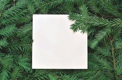 Fondo creativo de la rama del pino con la tarjeta del Libro Blanco Concepto del Año Nuevo y de la Feliz Navidad Imagen de archivo