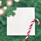 Fondo creativo de la rama del pino con la tarjeta del Libro Blanco Concepto del Año Nuevo y de la Feliz Navidad Fotos de archivo