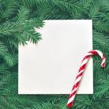 Fondo creativo de la rama del pino con la tarjeta del Libro Blanco Concepto del Año Nuevo y de la Feliz Navidad Imagenes de archivo