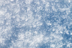 Fondo creted por muchas escamas de la nieve Fotografía de archivo