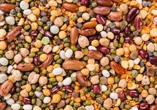 Fondo crudo del legume, fine su Immagine Stock Libera da Diritti