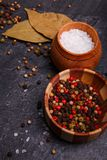 Fondo culinario con le foglie, le spezie ed il sale dell'alloro su un fondo concreto scuro Immagini Stock Libere da Diritti