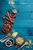 Fondo culinario con le varie spezie fotografia stock libera da diritti