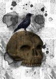 Fondo d'annata con un cranio Immagini Stock