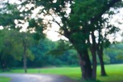 Fondo d'annata del bokeh da naturale Fotografie Stock