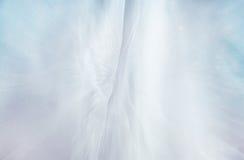 Fondo d'annata del corsetto del vestito da sposa Arco della stella blu con il nastro blu (involucro di regalo) su priorità bassa  Fotografia Stock