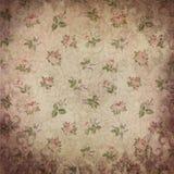 Fondo d'annata del modello delle rose - pizzo - Rose Pattern - verde rosa illustrazione di stock