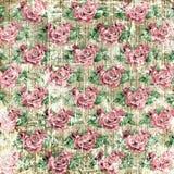 Fondo d'annata delle rose Fotografia Stock