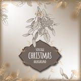 Fondo d'annata di Natale con il ramo del vischio Fotografie Stock
