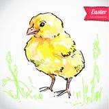 Fondo d'annata di Pasqua con l'illustrazione e l'autoadesivo disegnati a mano di schizzo Illustrazione di Stock
