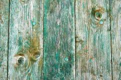Fondo d'annata marrone verde di legno di struttura Struttura invecchiata di legno con i nodi ed i fori di chiodo Immagini Stock Libere da Diritti