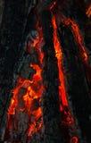 Fondo da un fuoco, dai firewoods conflagrant e dai carboni Fotografie Stock