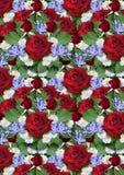 Fondo dal mazzo delle rose rosse con asterse della vinca Immagini Stock