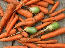 Fondo dalla carota Immagine Stock