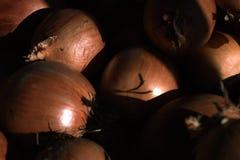 Fondo dalle cipolle Vendita delle verdure Mercato di verdure Fotografia Stock Libera da Diritti