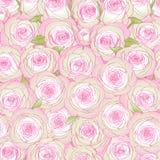 Fondo dalle rose rosa illustrazione vettoriale