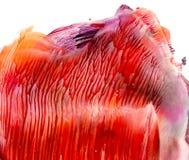 Fondo de acrílico rojo brillante Imagenes de archivo