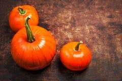 Fondo de Autumn Thanksgiving con la calabaza anaranjada en de madera Imagen de archivo libre de regalías