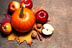 Fondo de Autumn Thanksgiving con las calabazas, las manzanas y la caída l Imagen de archivo libre de regalías