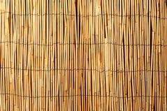 Fondo de bambú Imagenes de archivo