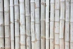 Fondo de bambú Imagen de archivo