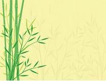 Fondo de bambú ilustración del vector