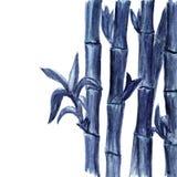Fondo de bambú azul de la acuarela en blanco ilustración del vector