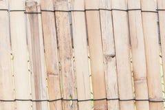 Fondo de bambú de la cerca Imágenes de archivo libres de regalías