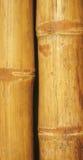 Fondo de bambú de la pared Fotografía de archivo