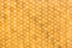 Fondo de bambú de la textura Fotos de archivo