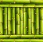 Fondo de bambú del marco Fotografía de archivo libre de regalías