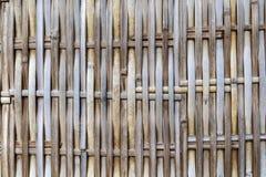 Fondo de bambú del modelo Fotografía de archivo libre de regalías