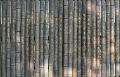 Fondo de bambú del texto de la tela escocesa imagenes de archivo