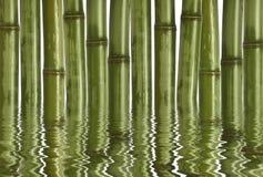 Fondo de bambú duro imagen de archivo