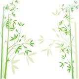 Fondo de bambú, ilustración ilustración del vector