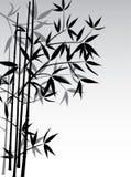 Fondo de bambú, vector ilustración del vector