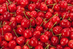 Fondo de cerezas maduras Fotos de archivo