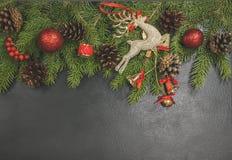 Fondo de conos del pino del árbol de Navidad, bola roja del marco de la Navidad, Fotos de archivo libres de regalías