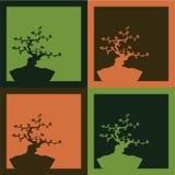 Fondo de cuatro bonsais - vector Foto de archivo