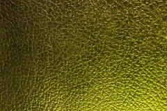 Fondo de cuero del dragón, verde Fotos de archivo libres de regalías