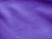 Fondo de cuero púrpura - fotos comunes Imagen de archivo libre de regalías