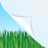 Fondo de Eco Imagen de archivo libre de regalías